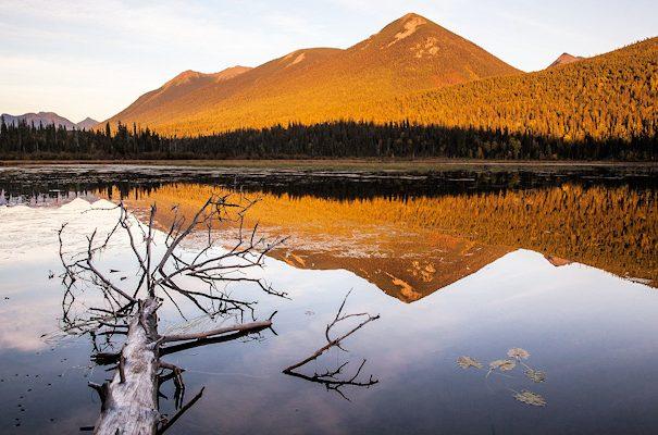 pg_dusk_bowron_lake